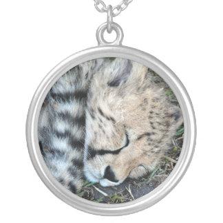 Foto de Cub del guepardo el dormir Collares Personalizados
