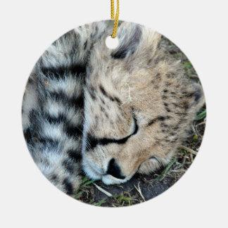 Foto de Cub del guepardo el dormir Ornatos