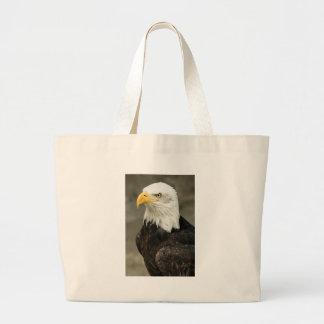 Foto de Eagle calvo Bolsa