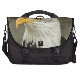Foto de Eagle calvo Bolsas De Ordenador