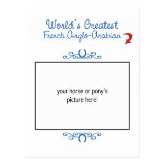 ¡Foto de encargo! El Anglo-Árabe francés más Postales