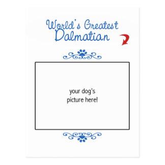¡Foto de encargo! El Dalmatian más grande de los m Postal