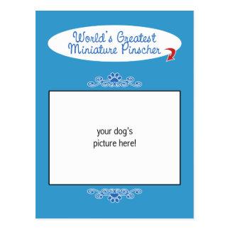 ¡Foto de encargo! El Pinscher miniatura más grande Postales