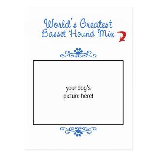 ¡Foto de encargo La mezcla más grande de Basset H Tarjetas Postales