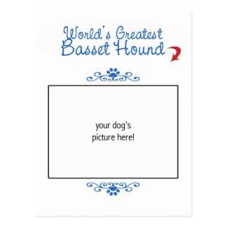 ¡Foto de encargo Mundos Basset Hound más grande Postal