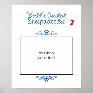¡Foto de encargo! Mundos el Sheepadoodle más grand Impresiones