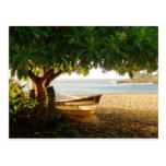 Foto de Eve del verano de la bahía de Waimea por Postal