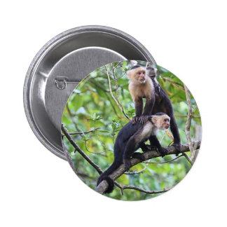 Foto de familia Blanco-Hecha frente del mono Pin