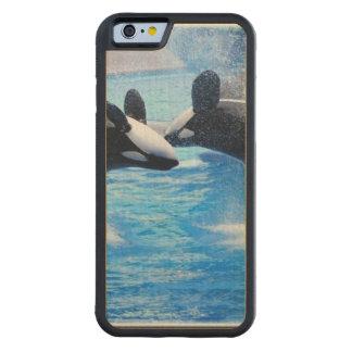 Foto de la ballena funda de iPhone 6 bumper arce