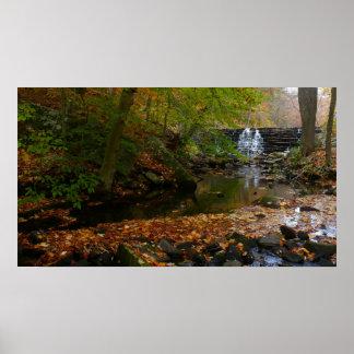 Foto de la cascada de la caída y de la naturaleza póster