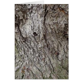 Foto de la corteza de árbol tarjeton