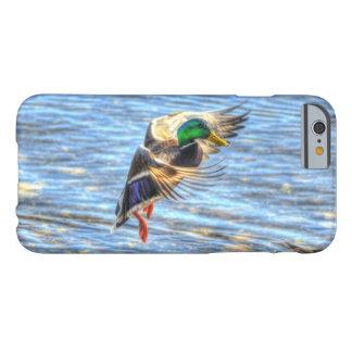 Foto de la fauna de Drake 5 del pato del pato Funda Para iPhone 6 Barely There