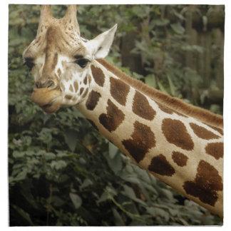Foto de la fauna de la jirafa servilletas de papel