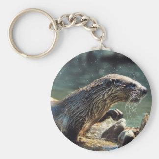 Foto de la fauna de los Animal-amantes de la nutri Llaveros Personalizados
