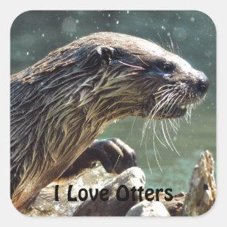 Foto de la fauna de los Animal-amantes de la Pegatina Cuadrada