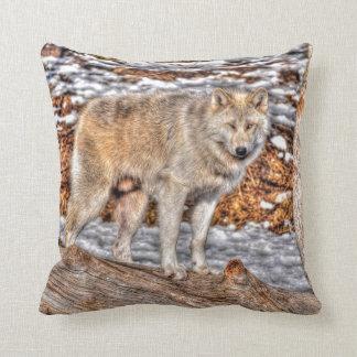 Foto de la fauna del lobo gris del macho alfa cojín decorativo