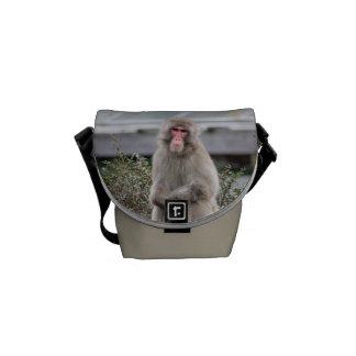 Foto de la fauna del mono de la nieve bolsa de mensajería