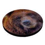 Foto de la fauna del oso de Brown del grisáceo Juego De Fichas De Póquer