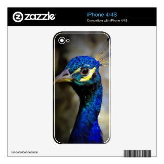 Foto de la fauna del pavo real skins para iPhone 4