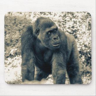 Foto de la fauna del primate del mono del gorila tapete de ratón
