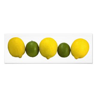 Foto de la fila de la fruta cítrica cojinete