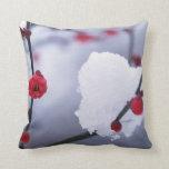 Foto de la flor de cerezo de la primavera de la al almohadas