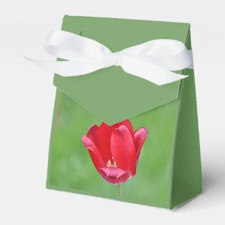 Foto de la flor de la primavera cajas para regalos