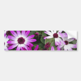 Foto de la flor pegatina de parachoque