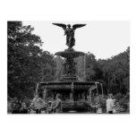 Foto de la fuente de Bethesda, Central Park Tarjetas Postales