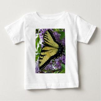 Foto de la lila de la mariposa del swallowtail del camisas