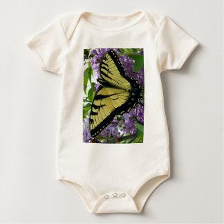Foto de la lila de la mariposa del swallowtail del enteritos
