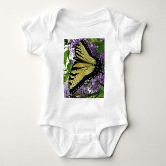 Foto de la lila de la mariposa del swallowtail del playeras