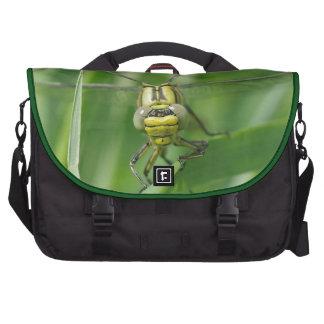 Foto de la macro de la libélula bolsas de portatil