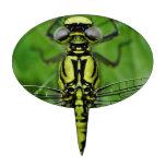 Foto de la macro de la libélula figuras de tarta