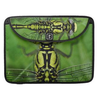 Foto de la macro de la libélula funda para macbooks