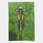 Foto de la macro de la libélula toallas