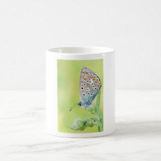 Foto de la macro de la mariposa taza