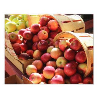 Foto de la manzana del soporte de la granja fotografía