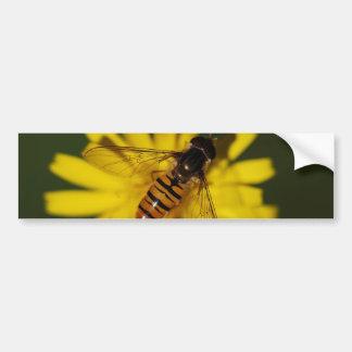 Foto de la mosca de la libración pegatina de parachoque
