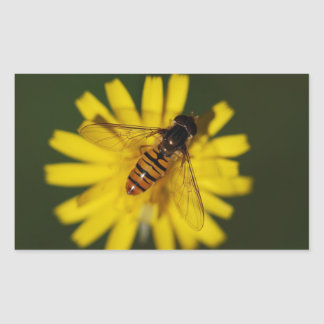 Foto de la mosca de la libración pegatina rectangular