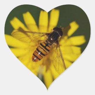 Foto de la mosca de la libración pegatina en forma de corazón