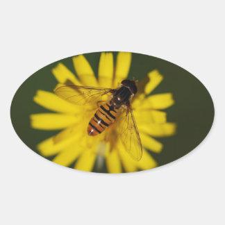Foto de la mosca de la libración pegatina ovalada