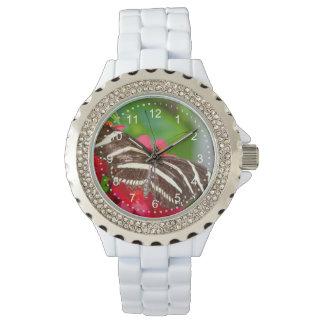 Foto de la naturaleza de la mariposa de Longwing Relojes