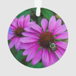 Foto de la naturaleza de una abeja del manosear en