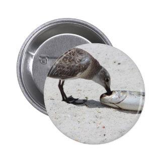 Foto de la naturaleza del pájaro que come pescados chapa redonda 5 cm