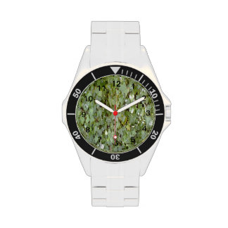 Foto de la planta relojes de pulsera