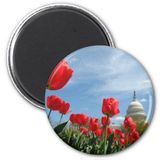 Foto de la primavera del edificio del capitolio de imán redondo 5 cm