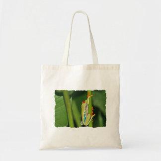 Foto de la rana arbórea bolsa