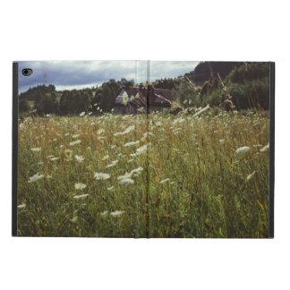Foto de la tarde del verano del campo de flores