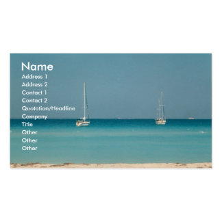 Foto de la tarjeta de la Florida de la isla de Tarjetas De Visita
